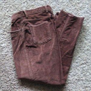 Winter pants sz 10P stretch BillBlass